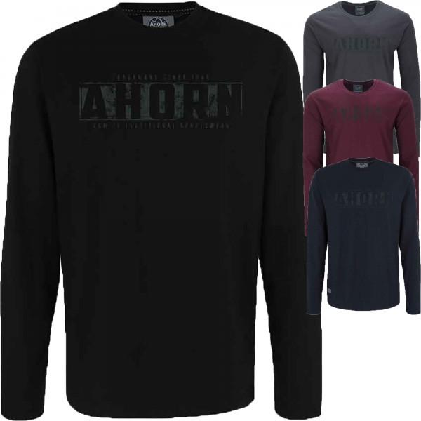 Ahorn Sportswear Longsleeve TRADITIONAL GREY